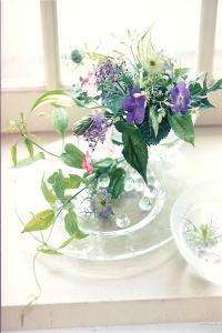 新開ひろみ Natural Flower of Season
